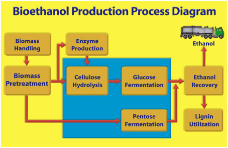 Bioethanol production process